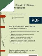 Estudio del sistema estomatognatico.pdf