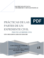 CARATULA PRACTICA FORENSE CIVIL.docx