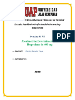 IBUPROFENO-pratica 5.docx