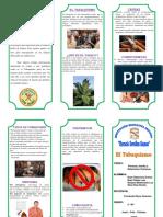 TRIPTICO DEL TABAQUISMO.docx