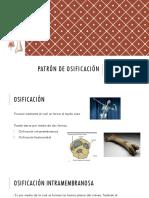 2. Patrón de osificación.pptx