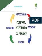 3 CICLO DE CIP.docx