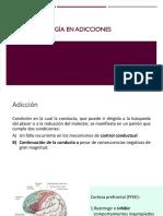 Neuropsicología de la adicción.pptx