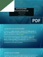 mutaciones cromosomicas