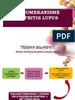 PATOMEKANISME NEFRITIS LUPUS.ppt.pptx