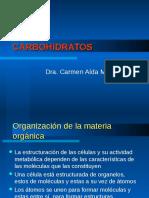 4. Carbohidratos