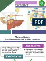 Metabolisme.pptx