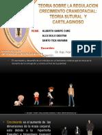 1. EXPO - ALBERTO..pptx
