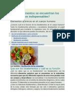 En qué alimentos se encuentran los bioelementos indispensables.docx