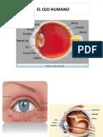 Metodos de examen de agudeza visual (10).pptx