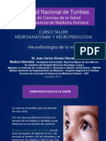 Neurofisiologia de La VISION Ok