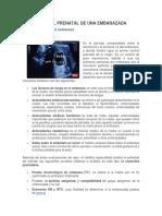 CONTROL PRENATAL DE UNA EMBARAZADA.docx