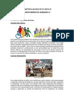MATERIAL TERMINADO.docx