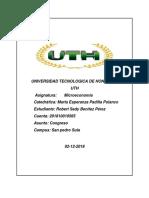 ENSAYO1.pdf