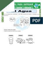Ficha El Agua Para Tercero de Primaria