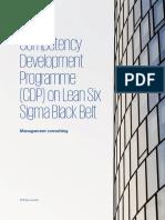 Lean Six Sigma Black Belt Program