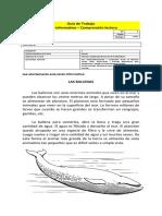 2º-BASICO-GUIA-COMPRENSION-LECTORA-LAS-BALLENAS.docx