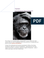 Chimpanzee.docx