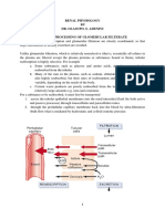Renal Physiology lecture.docx