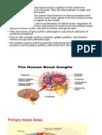 Basal ganglia ppt.pptx