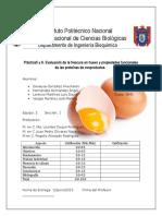 Huevo practica (1).docx