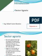 Clase 1a.introduc Al Sector Agrario