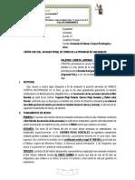 habeas corpus restringido.docx