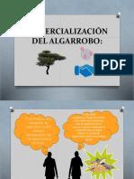 Comercialización Del Algarrobo