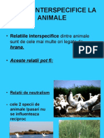 Relatii InterSpecifice la Animale