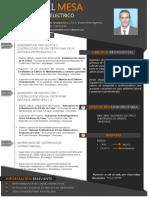 CV+Ing.pdf