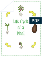 Lifecycle Plant