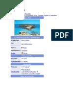 Lampedusa.docx