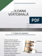 COLOANA VERTEBRALĂ.pdf