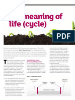 the Meaning of Life Cycle by John Woodhouse