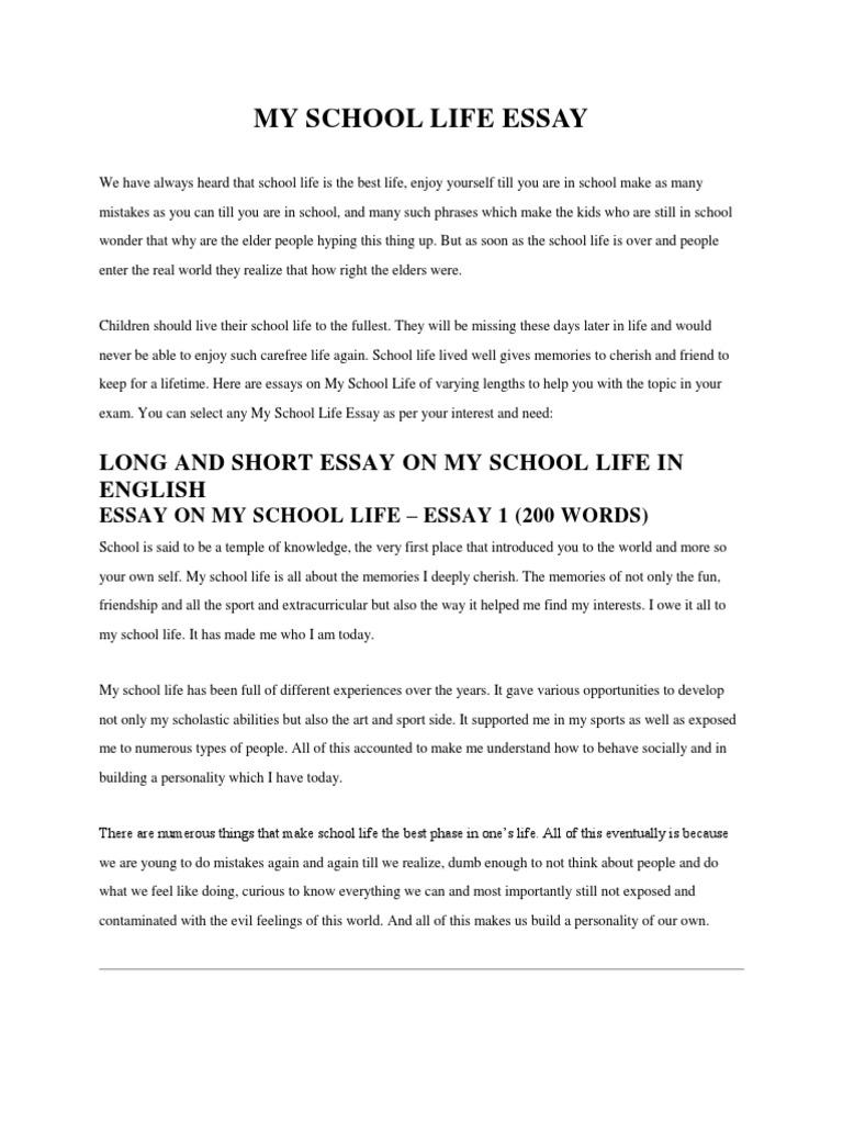 my school life essaydocx
