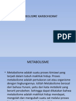 ppt metabolisme karbohidrat
