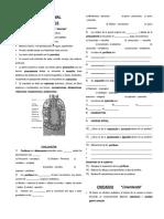 Guía de Exploración Quimica Nacional Con Ejemplos