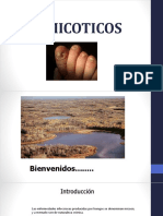antimicoticos-171006051322