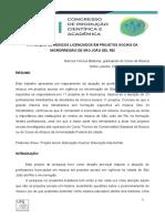 A atuação de músicos licenciados em projetos sociais da microrregião de São João del Rei