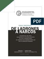De ladrones a narcos_Tesis de Doctorado Eugenia Cozzi - 2018.pdf
