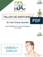 Anatomia I.pdf