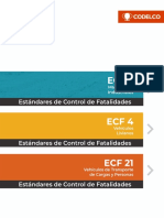 estandares_control_de_fatalidades__ecf__codelco.pdf