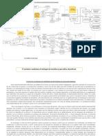 Mapa Conceptual 2.0.docx