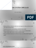 Anatomi System Sirkulasi