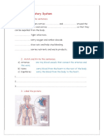 circulatory-system_47580.docx
