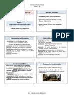 Bolilla 2-IMPRESION.docx