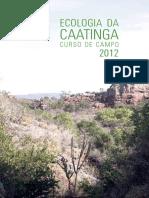 livro_curso_de_campo_caatinga_2012.pdf