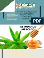 Estudio de Mercado y Tecnico - Miel de Penco Presentacion Final-expo