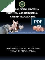MATERIA PRIMA ANIMAL RL.pdf