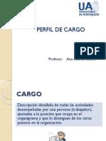 Perfil y Análisis de Cargo